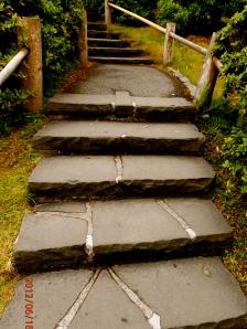 Japanese Tea Garden Path